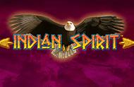 Играть в игровые автоматы Indian Spirit