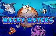 Играйте на деньги в слот Wacky Waters