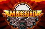 Играть в казино в Дикий Дух