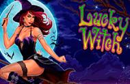 Популярные виртуальные флеш игры на игровом автомате Lucky Witch