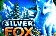 Бесплатные автоматы Silver Fox